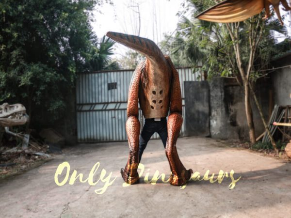 Buy-T-Rex-Costume-For-Sightseeing-Attraction333