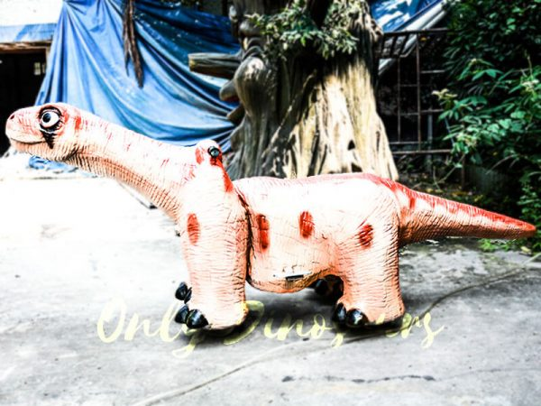 Cute Brontosaurus Dino Rider for Playground3