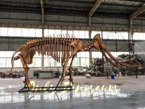 Lifesize Palaeoloxodon namadicus Skeleton for Museum