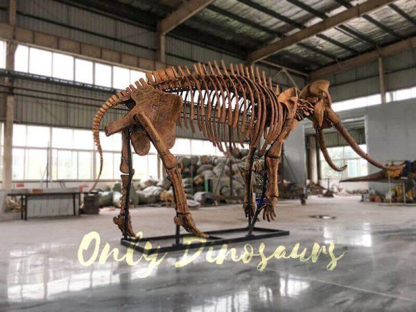 Lifesize Palaeoloxodon namadicus Skeleton for Museum2