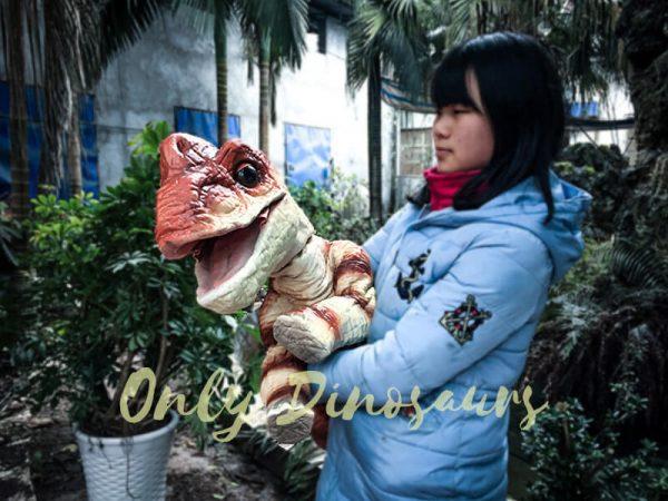 Likable Baby Dinosaur Brachiosaurus Puppet Red4