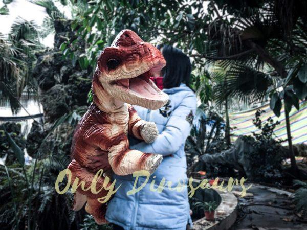 Likable Baby Dinosaur Brachiosaurus Puppet Red6