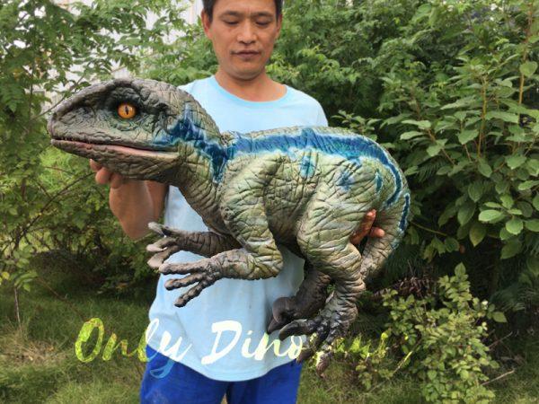 Little-Velociraptor-Puppet-For-Baby-Entertainment1-1