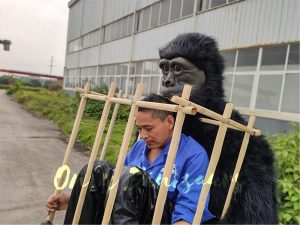 Man in a King Kong Cage Costume