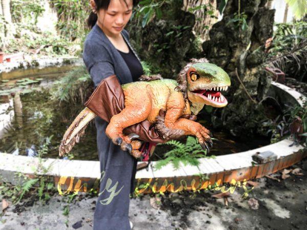 Vivid Fairy Raptor Glove Puppet Realistic1