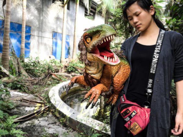 Vivid Fairy Raptor Glove Puppet Realistic2