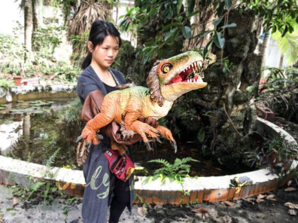 Vivid Fairy Raptor Glove Puppet Realistic3