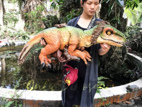 Vivid Fairy Raptor Glove Puppet Realistic5
