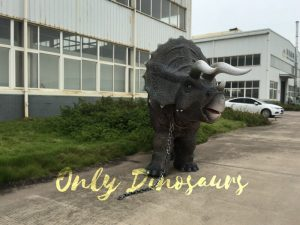 Gray Two-person Triceratops Costume