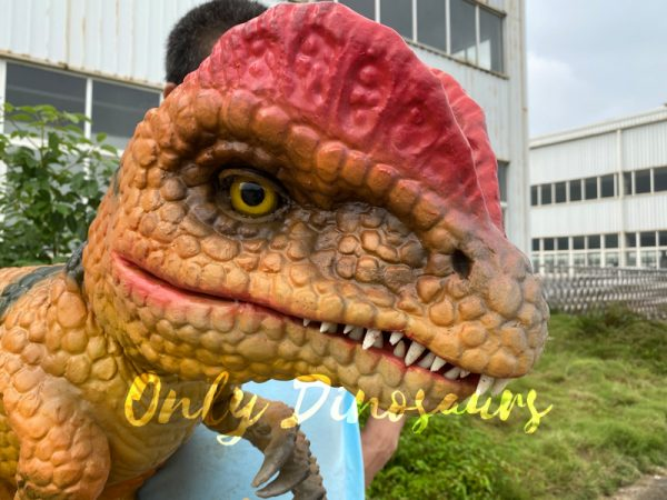 Lovely-Baby-Dilophosaurus-Handheld-Puppet