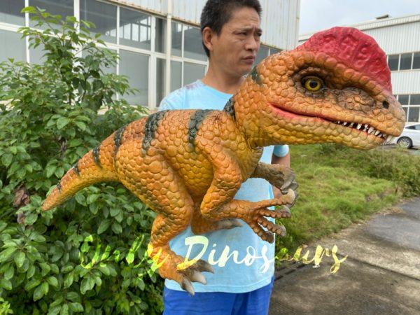 Lovely-Baby-Dilophosaurus-Handheld-Puppet1