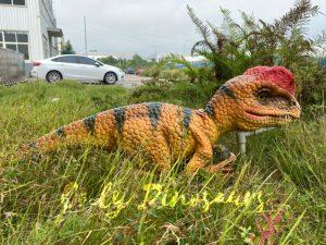Lovely Baby Dilophosaurus Handheld Puppet