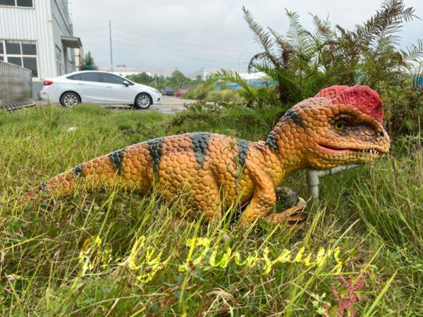 Lovely-Baby-Dilophosaurus-Handheld-Puppet3
