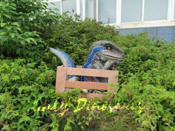 Raptor-Child-in-Crate-Puppet-for-Workshop2