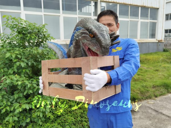 Raptor-Child-in-Crate-Puppet-for-Workshop3