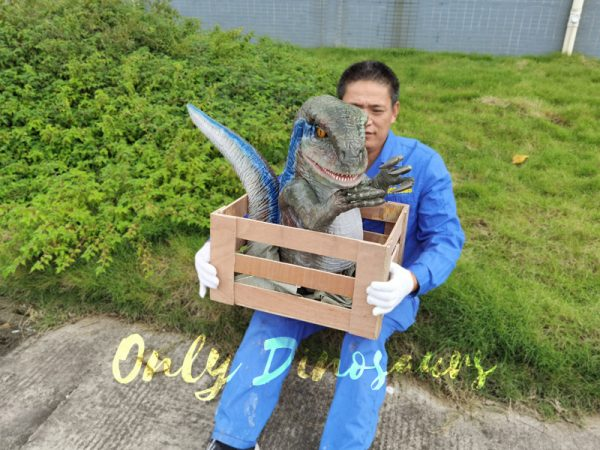Raptor-Child-in-Crate-Puppet-for-Workshop5