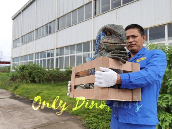 Raptor-Child-in-Crate-Puppet-for-Workshop6