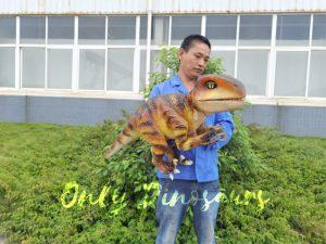 Stage Show  Life-Size Handheld Velociraptor