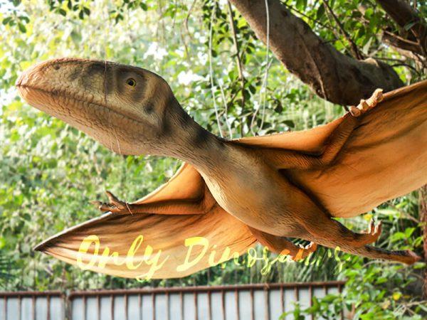 Realistic-Animatronic-Pterosaur-for-Park1