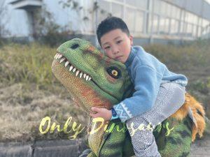 Lifelike Boy Riding Dinosaur Costume