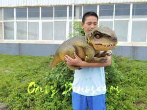 Approachable Baby Tyrannosaurus from Jurassic World