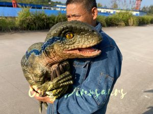 Lifelike Raptor Hand Puppet for Sale