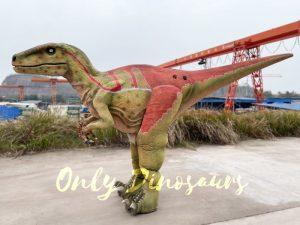 Realistic Adult Velociraptor Costume with Hidden Legs