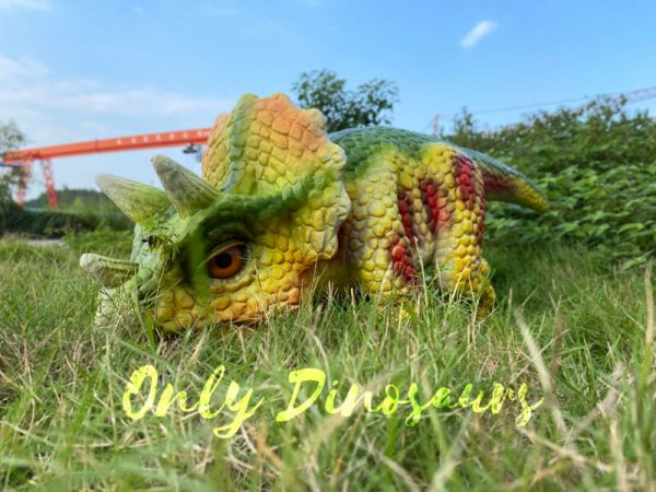 Red-Dot-Cute-Triceratops-Baby-Puppet4
