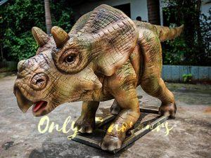 Animatronic Juvenile Triceratops for Dinosaur Park
