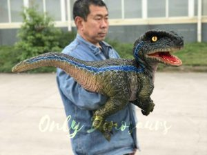 Arm Baby Velociraptor Puppet for Kids