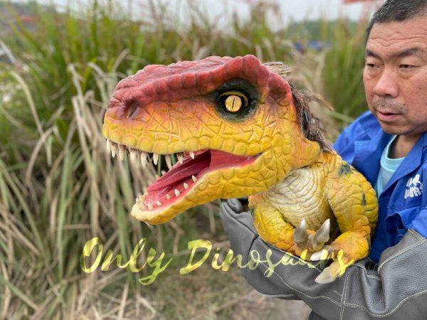 Flexible-False-Arm-T-Rex-Puppet-on-Sale7