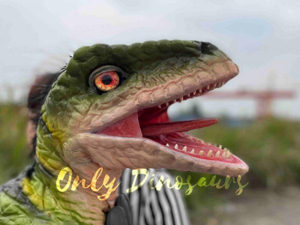 Full-Body-Baby-Velociraptor-Cub-on-sale6