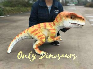 Hand-held Baby Tyrannosaurus Rex with adorable appearance