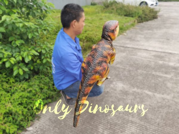 Lifelike-Customizable-Baby-Raptor-Dinosaur-Hand-Puppet4