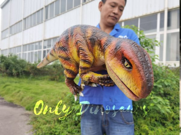 Lifelike-Customizable-Baby-Raptor-Dinosaur-Hand-Puppet6