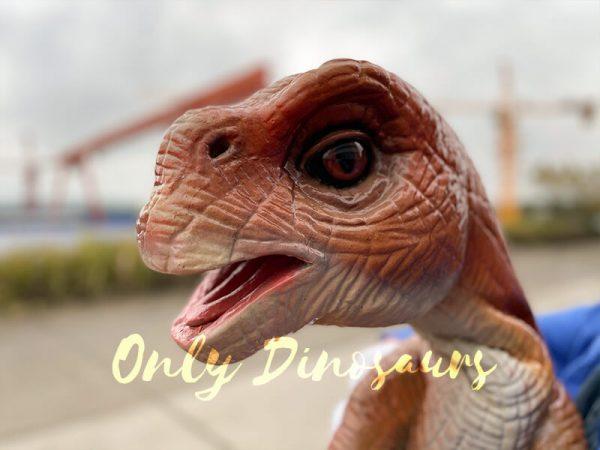 Mind-blowing-Baby-Brachiosaurus-Puppet1