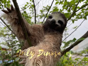 Realistic Sloth Animal Hand Puppet for Sale