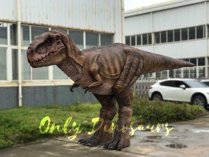 Vivid T-Rex Costume with Stilts