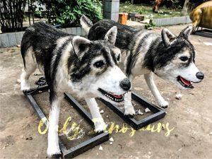 Realistic Robotic Siberian Husky Animal Models for Exhibition