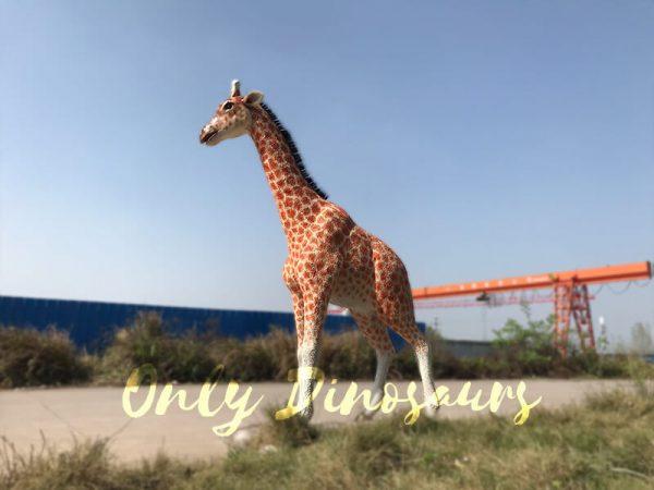 Distinctive-Simulation-Animatronic-Giraffe-Model