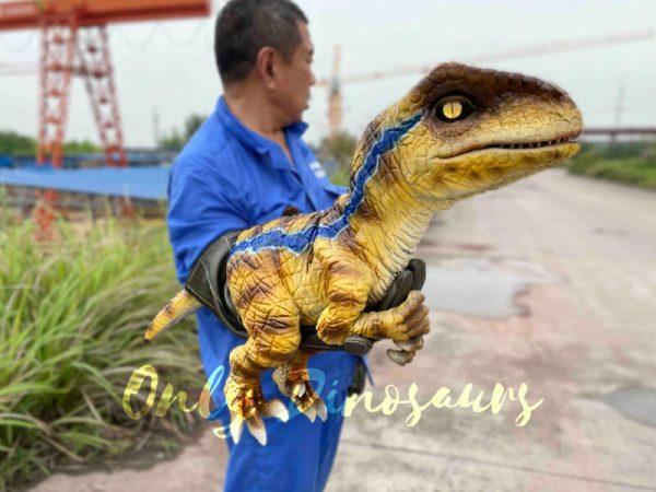 Fantastic-Raptor-Dinosaur-Full-body-Hand-Puppet3