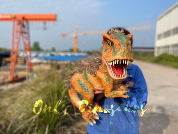Feathered-Baby-T-Rex-Dino-Puppet-for-Sale1