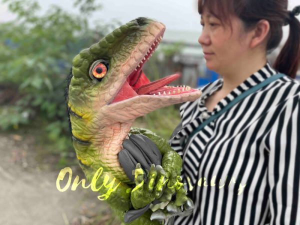 Full-Body-Baby-Velociraptor-Cub-on-Sale4