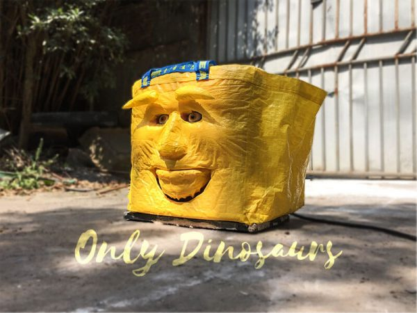 Funny-Talking-Bag-for-Tricking-on-People3