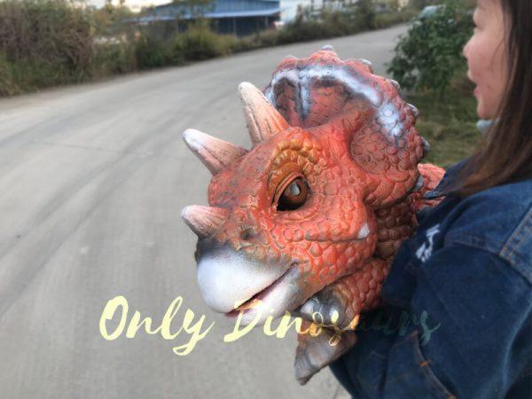 Intelligent-Baby-Triceratops-Dinosaur-Puppet2