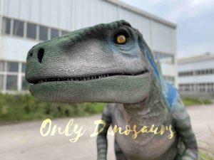 Jurassic Lifelike Velociraptor Dinosaur Costume for Sale