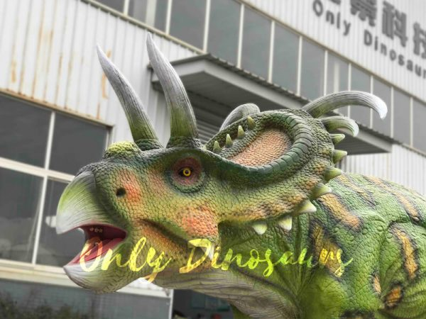 Life-size-Albertaceratops-Animatronic-Dinosaur-Model4