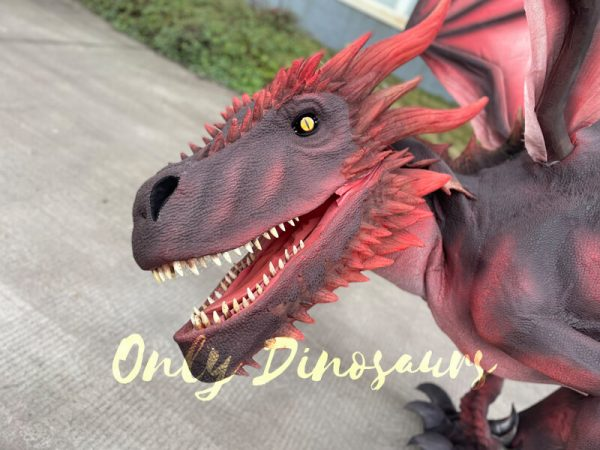 Lifelike-Dragon-Outfit-for-Adults2
