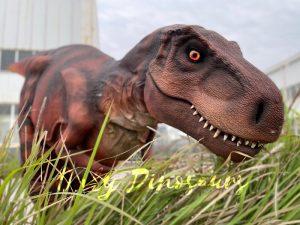 Lifelike Hidden Legs T-Rex Dinosaur Costume for Sale