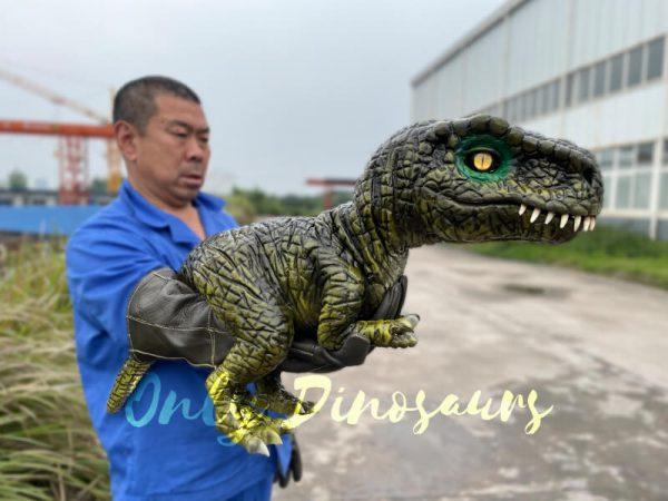Stunning-T-Rex-Dinosaur-Hand-Puppet1